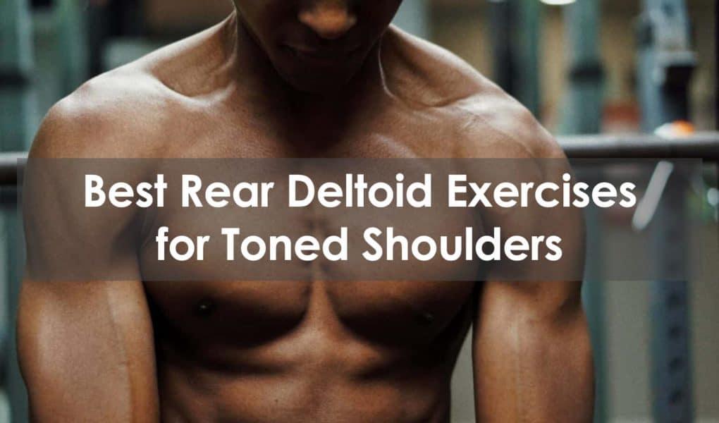 rear deltoid exercises