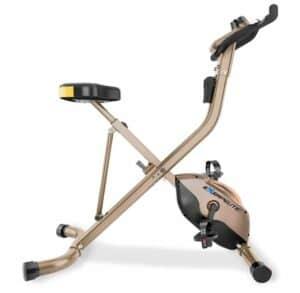 Exerpeutic Gold Folding Bike