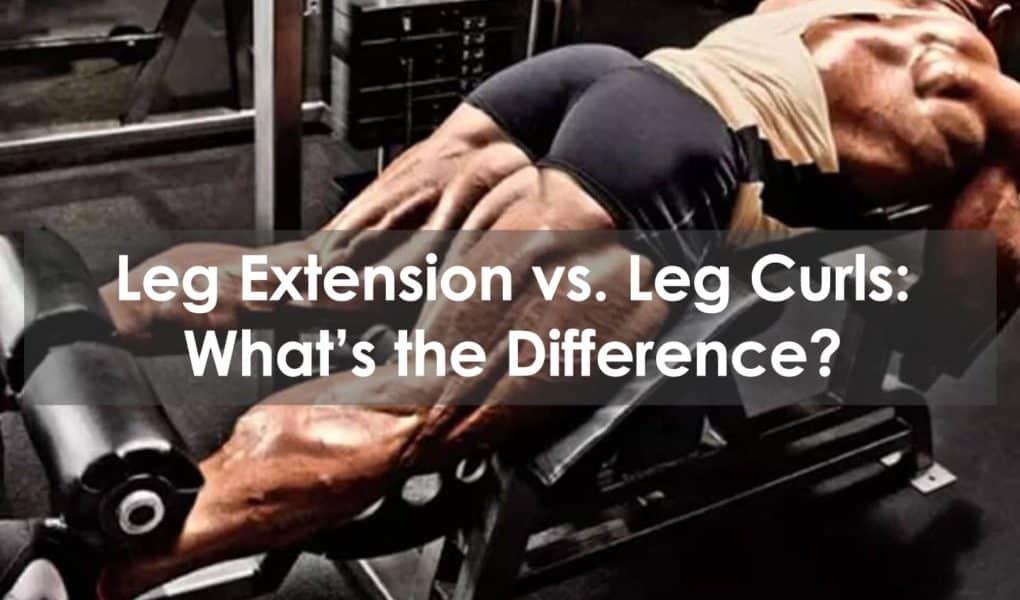 leg extension vs leg curls