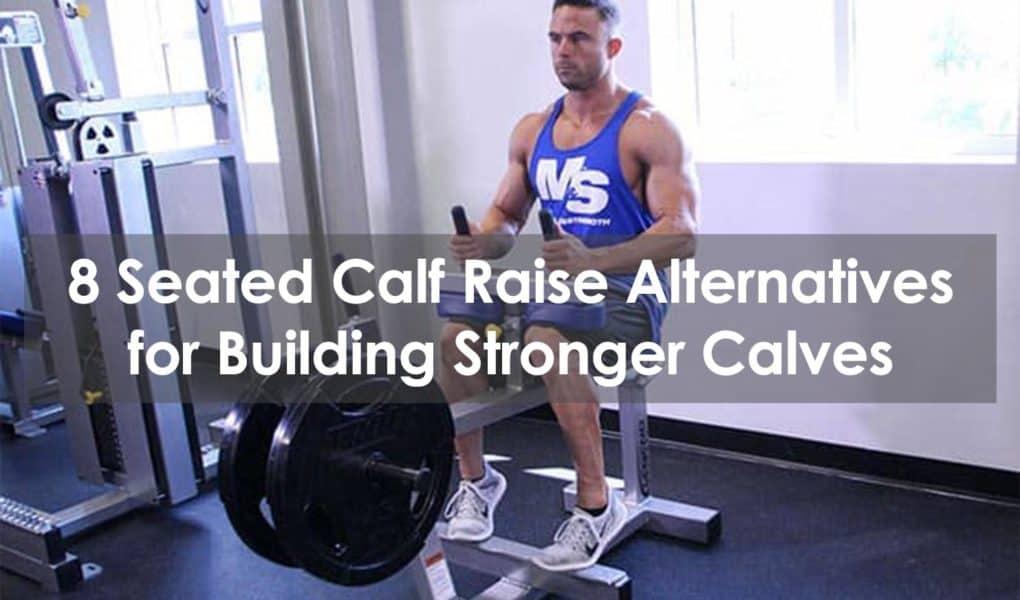 seated calf raise alternative