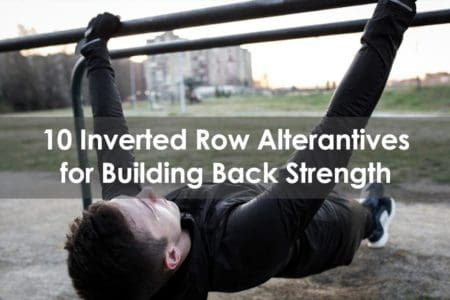 inverted row alternative