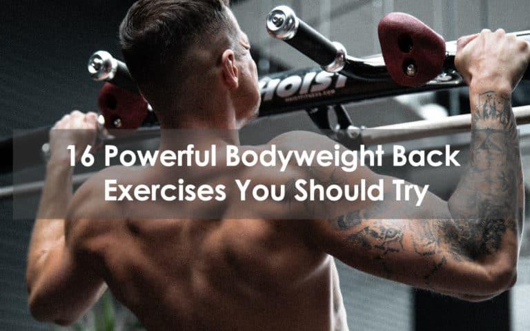 bodyweight back exercises