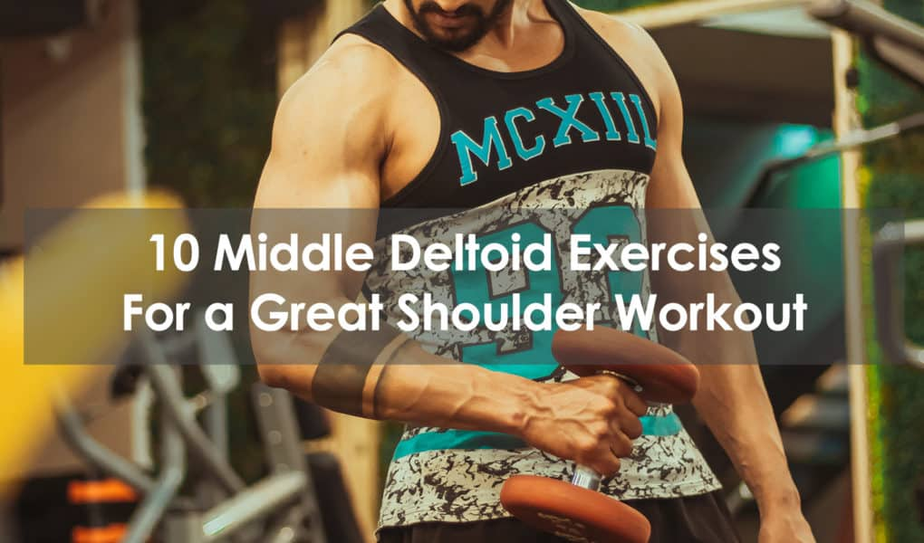 middle deltoid exercise