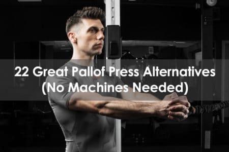 pallof press alternative