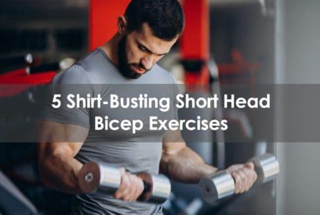 short head bicep exercises
